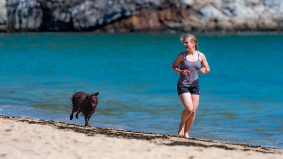 Woman running on beach with her pet dog