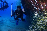 images/Diving-adventures-in-Vanuatu-180.jpg