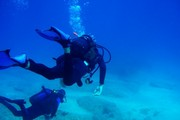 images/Diving-in-Vanuatu-180.jpg