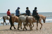 images/Horseback-riding-180.jpg