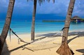images/Tropical-beach-hammock-120.jpg